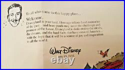 Disneyland 40th Anniversary. Error Map. 1995-E